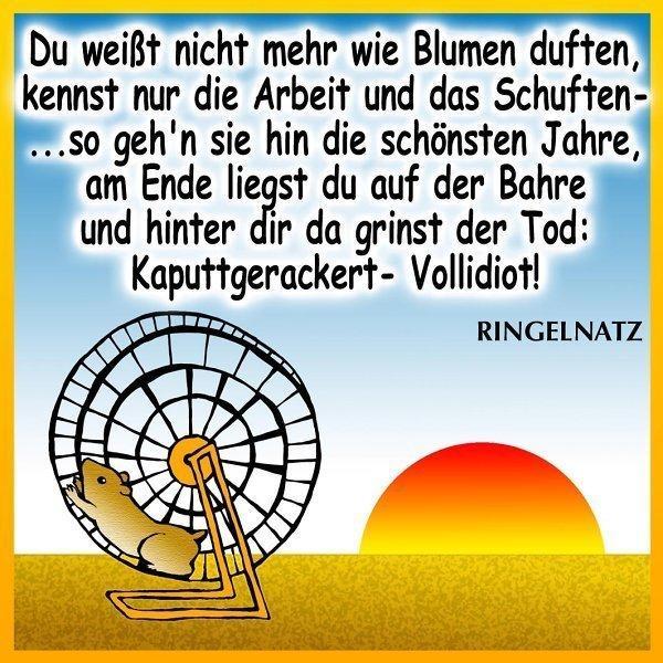 Beate Heinen Weihnachtsbilder.Alles Gute Zum 70 Liebe Beate Heinen Archiv Rhein Zeitung