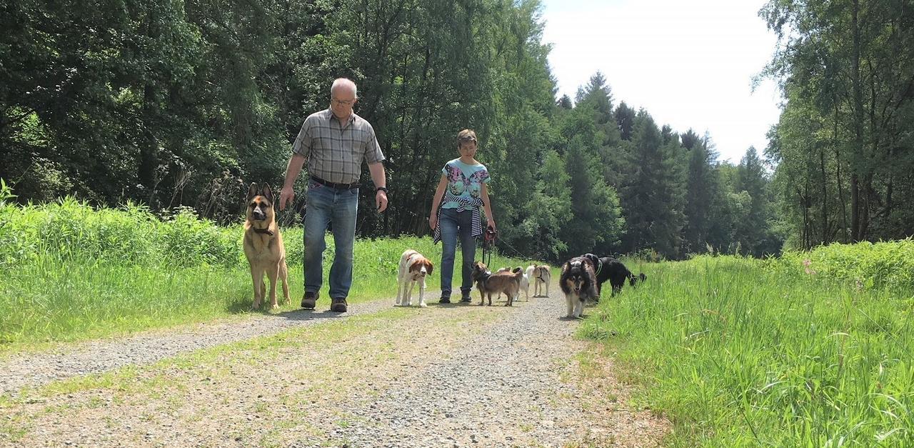 Roland Und Rita Schmitz Sind Täglich Dreimal Mit Ihren Pensionsgästen Auf  Vier Pfoten Unterwegs. Berufstätige Können Ihre Hunde Auch Zur  Tagesbetreuung Nach ...