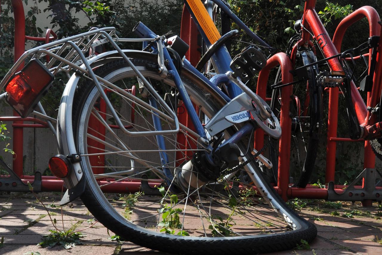 Schrott Oder Fundsache Was Passiert Mit Den Fahrrad Leichen In