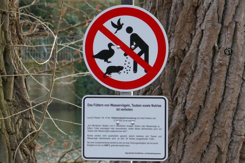 Das berühren der figüren mit den pfoten ist verboten ursprung
