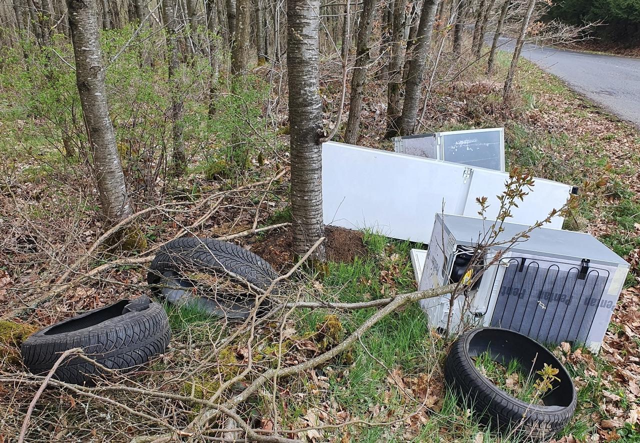 Natur als Müllhalde: Auch in Kausen treiben dreiste Umweltfrevler ihr Unwesen