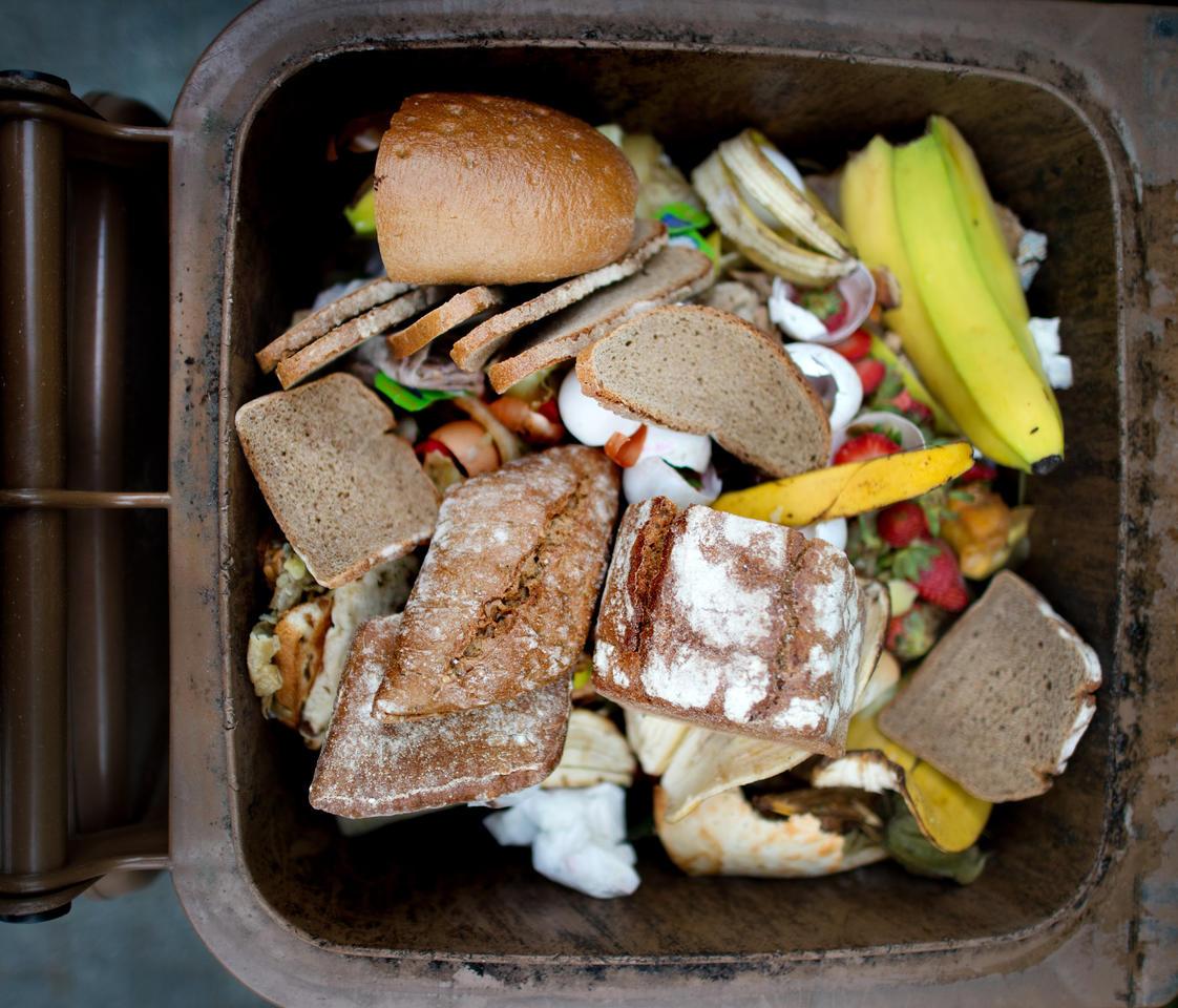 Nur wenige Müllsünder unterwegs: Abfallswirtschaftsbetrieb ist zufrieden mit dem Sortierverhalten der Bürger